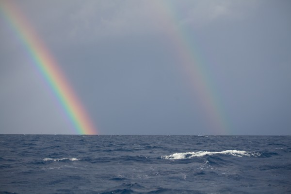 Double Rainbow at Peahi Farms