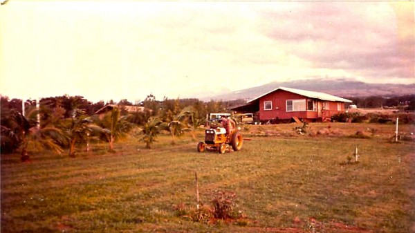 Planting  and Plowing 1981