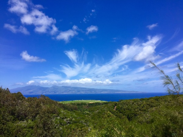 Mahana ridge view